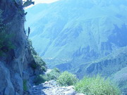 Colca Hiking