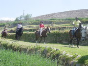 Horse Riding Arequipa